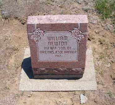 HANNER, WILLIAM NEWTON - Stevens County, Kansas | WILLIAM NEWTON HANNER - Kansas Gravestone Photos