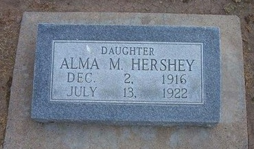HERSHEY, ALMA M - Stevens County, Kansas | ALMA M HERSHEY - Kansas Gravestone Photos