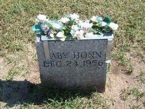 HONN, BABY - Stevens County, Kansas | BABY HONN - Kansas Gravestone Photos