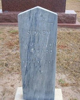 HUBBARD, SIDNEY - Stevens County, Kansas   SIDNEY HUBBARD - Kansas Gravestone Photos