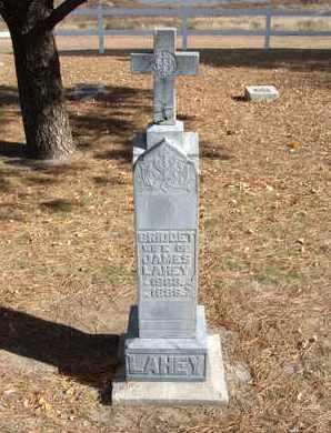 LAHEY, BRIDGET - Stevens County, Kansas   BRIDGET LAHEY - Kansas Gravestone Photos