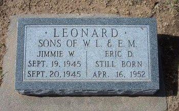 LEONARD, JIMMIE W - Stevens County, Kansas | JIMMIE W LEONARD - Kansas Gravestone Photos