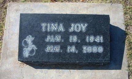 LEONARD, TINA JOY - Stevens County, Kansas | TINA JOY LEONARD - Kansas Gravestone Photos
