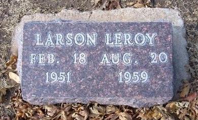 LEWIS, LARSON LEROY - Stevens County, Kansas | LARSON LEROY LEWIS - Kansas Gravestone Photos