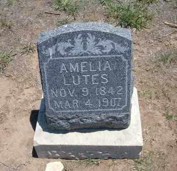 LUTES, AMELIA - Stevens County, Kansas | AMELIA LUTES - Kansas Gravestone Photos