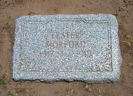 MORFORD, LESTER - Stevens County, Kansas | LESTER MORFORD - Kansas Gravestone Photos