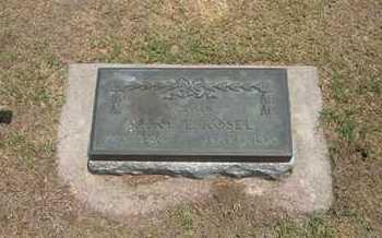 ROSEL, MARY ELIZABETH - Stevens County, Kansas | MARY ELIZABETH ROSEL - Kansas Gravestone Photos