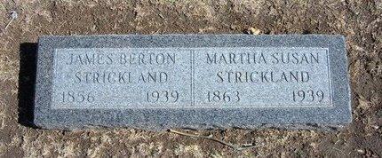 STRICKLAND, JAMES BERTON - Stevens County, Kansas | JAMES BERTON STRICKLAND - Kansas Gravestone Photos