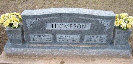 THOMPSON, ELMER H - Stevens County, Kansas | ELMER H THOMPSON - Kansas Gravestone Photos