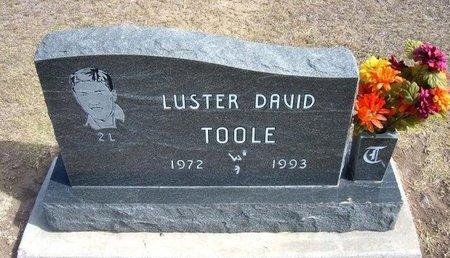 TOOLE, LUSTER DAVID - Stevens County, Kansas | LUSTER DAVID TOOLE - Kansas Gravestone Photos