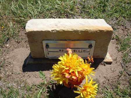 WELCH, MR - Stevens County, Kansas | MR WELCH - Kansas Gravestone Photos