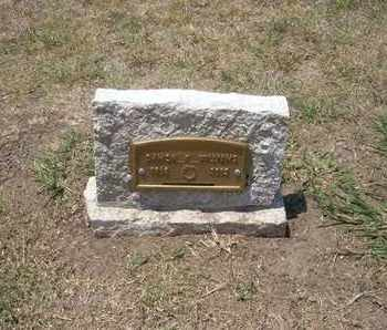 WILLIAMS, DAMON K - Stevens County, Kansas | DAMON K WILLIAMS - Kansas Gravestone Photos