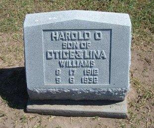 WILLIAMS, HAROLD D - Stevens County, Kansas   HAROLD D WILLIAMS - Kansas Gravestone Photos