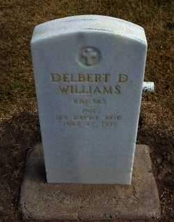 WILLIAMS, DELBERT D (VETERAN WWI) - Stevens County, Kansas | DELBERT D (VETERAN WWI) WILLIAMS - Kansas Gravestone Photos