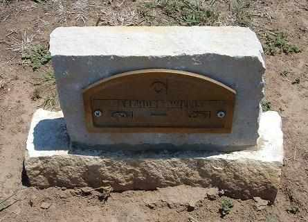 WILLIS, JAMES ARTHUR - Stevens County, Kansas | JAMES ARTHUR WILLIS - Kansas Gravestone Photos