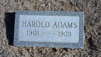 ADAMS, HAROLD - Wichita County, Kansas | HAROLD ADAMS - Kansas Gravestone Photos