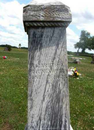 HOGLAND HOLLINGSWORTH, ELIZABETH A - Wilson County, Kansas | ELIZABETH A HOGLAND HOLLINGSWORTH - Kansas Gravestone Photos