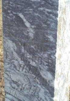 MILLER ARNOLD, HELEN SOPHIA - Woodson County, Kansas | HELEN SOPHIA MILLER ARNOLD - Kansas Gravestone Photos