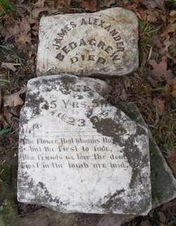 BEDIGREW, JAMES ALEXANDER - Woodson County, Kansas | JAMES ALEXANDER BEDIGREW - Kansas Gravestone Photos