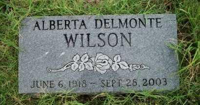 WILSON, ALBERTA DELMONTE - Woodson County, Kansas   ALBERTA DELMONTE WILSON - Kansas Gravestone Photos