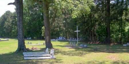 * OVERVIEW,  - Allen County, Louisiana    * OVERVIEW - Louisiana Gravestone Photos