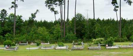 * OVERVIEW,  - Allen County, Louisiana |  * OVERVIEW - Louisiana Gravestone Photos