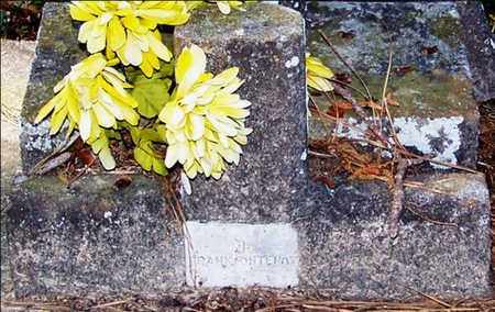 FONTENOT, FRANK - Allen County, Louisiana   FRANK FONTENOT - Louisiana Gravestone Photos