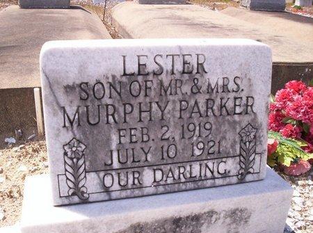 PARKER, LESTER - Allen County, Louisiana | LESTER PARKER - Louisiana Gravestone Photos