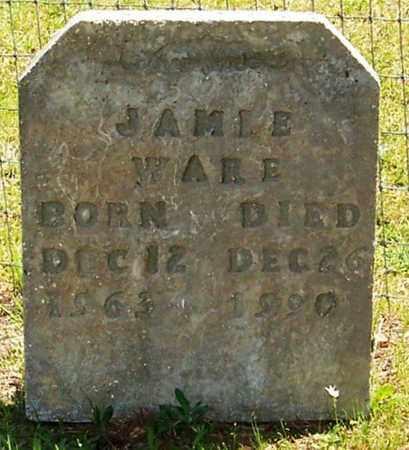 WARE, JAMIE - Allen County, Louisiana | JAMIE WARE - Louisiana Gravestone Photos