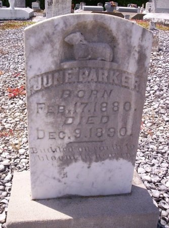 PARKER, JUNE - Allen County, Louisiana | JUNE PARKER - Louisiana Gravestone Photos