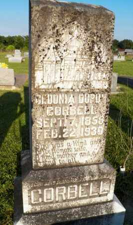 DUPUY CORBELL, CEDONIA - Avoyelles County, Louisiana | CEDONIA DUPUY CORBELL - Louisiana Gravestone Photos