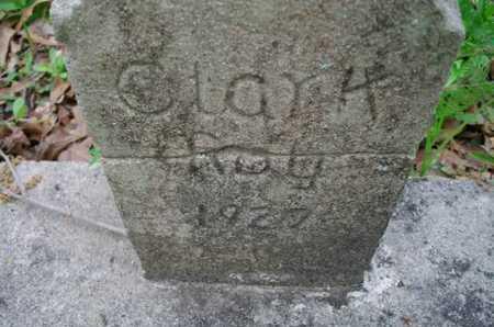 CLARK, ROY - Beauregard County, Louisiana | ROY CLARK - Louisiana Gravestone Photos