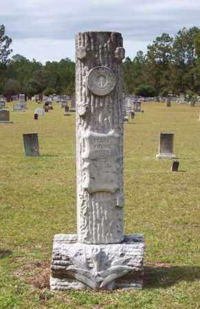 YOUNG, FELIX - Beauregard County, Louisiana | FELIX YOUNG - Louisiana Gravestone Photos