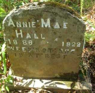 HALL, ANNIE MAE - Bienville County, Louisiana | ANNIE MAE HALL - Louisiana Gravestone Photos