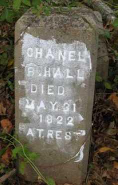 HALL, CHANEL B - Bienville County, Louisiana | CHANEL B HALL - Louisiana Gravestone Photos