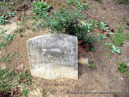 HALL, CHARLES  - Bienville County, Louisiana | CHARLES  HALL - Louisiana Gravestone Photos