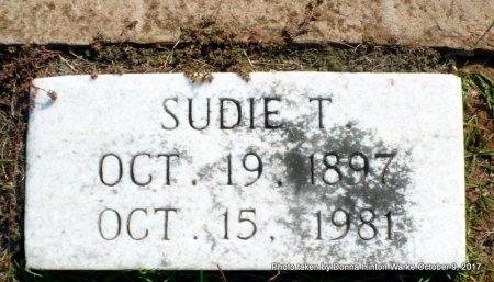 HALL, SUDIE ANN - Bienville County, Louisiana   SUDIE ANN HALL - Louisiana Gravestone Photos