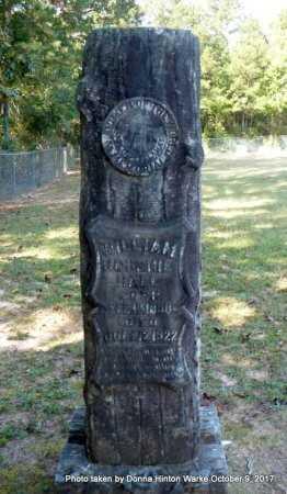 HALL, WILLIAM JOHNNIE - Bienville County, Louisiana | WILLIAM JOHNNIE HALL - Louisiana Gravestone Photos