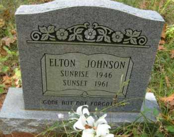 JOHNSON, ELTON - Bienville County, Louisiana | ELTON JOHNSON - Louisiana Gravestone Photos