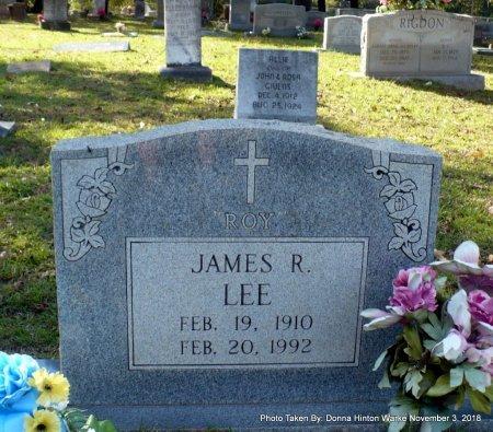 LEE, JAMES ROY - Bienville County, Louisiana | JAMES ROY LEE - Louisiana Gravestone Photos