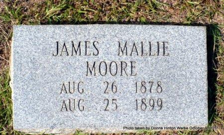 MOORE, JAMES MALLIE - Bienville County, Louisiana   JAMES MALLIE MOORE - Louisiana Gravestone Photos