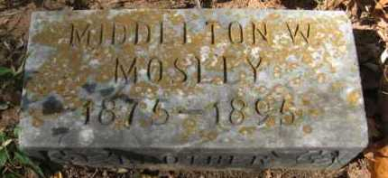 MOSLEY, MIDDLETON W - Bienville County, Louisiana   MIDDLETON W MOSLEY - Louisiana Gravestone Photos