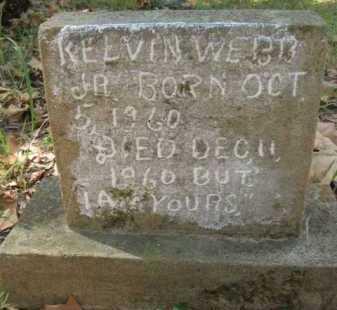 WEBB, KELVIN, JR - Bienville County, Louisiana   KELVIN, JR WEBB - Louisiana Gravestone Photos