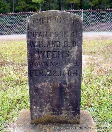 WEEMS, INFANT SON - Bienville County, Louisiana | INFANT SON WEEMS - Louisiana Gravestone Photos