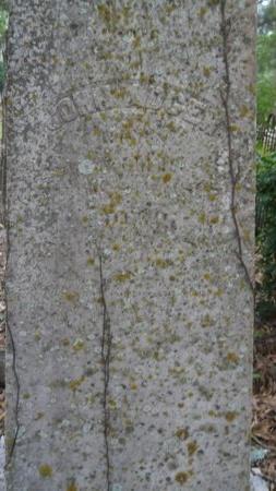 ADGER, JOHN - Bossier County, Louisiana   JOHN ADGER - Louisiana Gravestone Photos