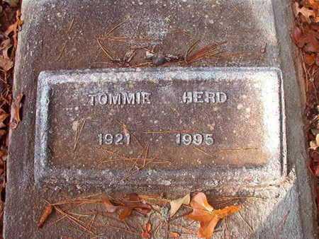 HERD, TOMMIE - Bossier County, Louisiana | TOMMIE HERD - Louisiana Gravestone Photos