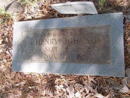 JOHNSON, HENRY - Bossier County, Louisiana | HENRY JOHNSON - Louisiana Gravestone Photos
