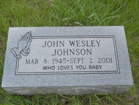 JOHNSON, JOHN WESLEY - Bossier County, Louisiana | JOHN WESLEY JOHNSON - Louisiana Gravestone Photos