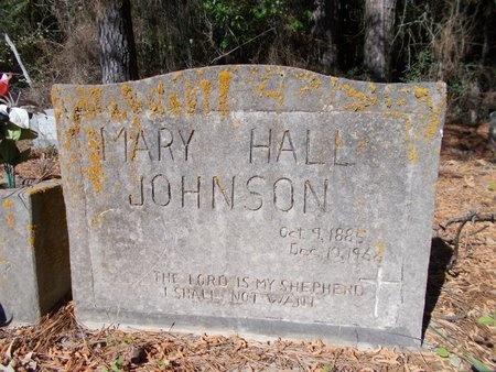 JOHNSON, MARY - Bossier County, Louisiana   MARY JOHNSON - Louisiana Gravestone Photos