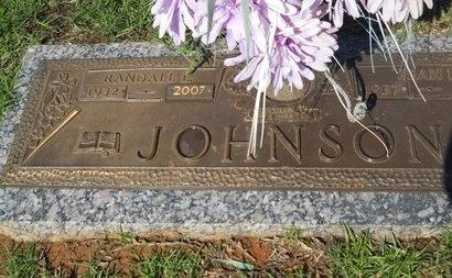 JOHNSON, RANDALL L - Bossier County, Louisiana | RANDALL L JOHNSON - Louisiana Gravestone Photos